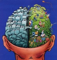121326061617-cerveau-gauche-cerveau-droit-icone.jpg